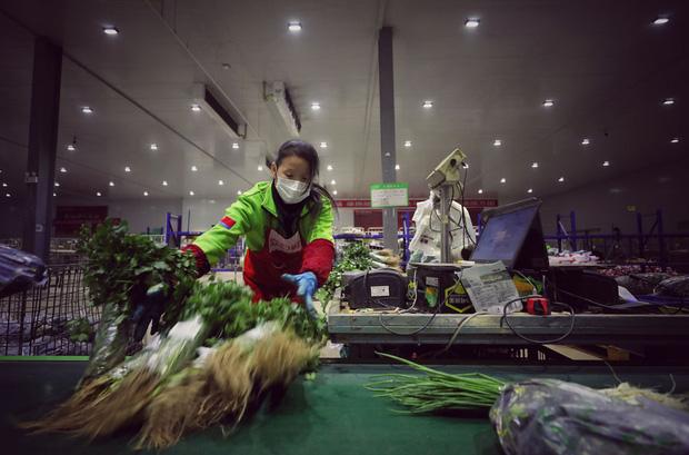 Những chiến binh làm việc xuyên màn đêm để đánh thức Vũ Hán khỏi cơn hôn mê vì dịch virus corona - Ảnh 11.