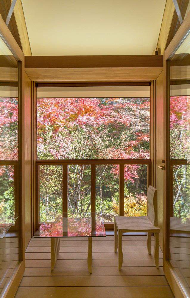 Vẻ đẹp trác tuyệt nhà gỗ uốn cong giữa khu rừng ai cũng muốn trải nghiệm - Ảnh 6.