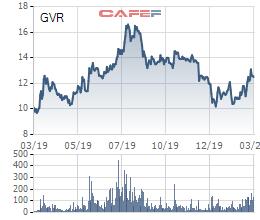 Tập đoàn Cao su (GVR) chào sàn HoSE ngày 17/3/2020, định giá hơn 46.000 tỷ đồng - Ảnh 1.