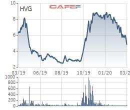 Thị giá giảm gần 1 nửa, một TV. HĐQT của Thủy sản Hùng Vương (HVG) vẫn đăng ký thoái sạch vốn - Ảnh 1.