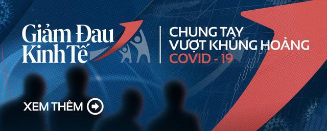 Các giải pháp mạnh để vực dậy nền kinh tế trong đại dịch Covid-19 - Ảnh 2.