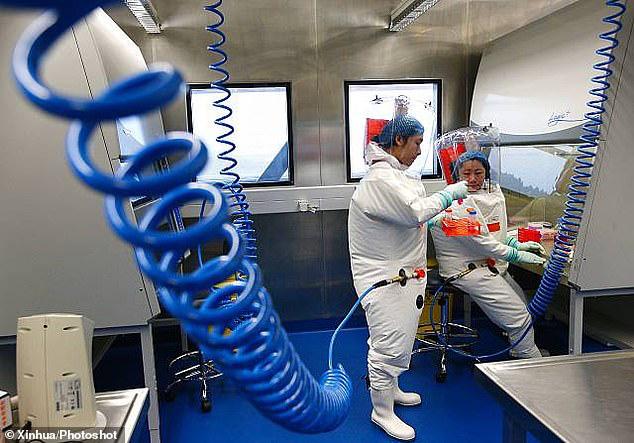 Bên trong phòng thí nghiệm virus bí ẩn ở Vũ Hán  - Ảnh 1.
