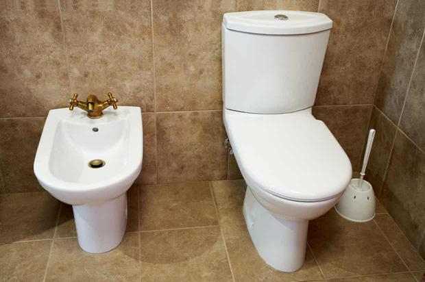 Không mua nổi giấy vệ sinh, người Mỹ chuyển sang sốt... vòi xịt toilet giữa đại dịch Covid-19: Cháy hàng trên mọi mặt trận - Ảnh 3.