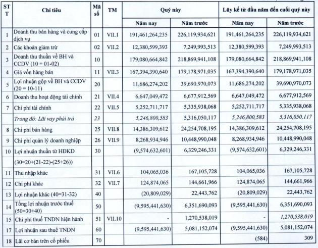 Bánh kẹo Hải Hà (HHC) lỗ gần chục tỷ đồng trong quý 1/2020 - Ảnh 1.