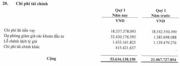 Trích dự phòng tài chính lớn, Vinapharm (DVN) báo lợi nhuận giảm hơn 1 nửa trong quý 1 - Ảnh 1.