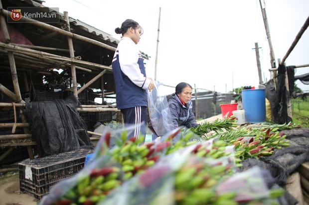 """""""Thủ phủ"""" hoa tại Hà Nội nở rộ giữa dịch COVID-19: Tưởng thắng vụ mà thành bại, hoa cười nhưng người khóc - Ảnh 11."""