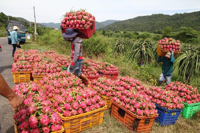 Trung Quốc lại siết cửa khẩu, tạm dừng đưa nông sản lên biên giới - Ảnh 1.