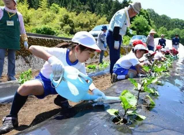 Nhật Bản đã giáo dục trẻ em khác biệt như thế nào ngay từ khi còn học mẫu giáo? - Ảnh 3.