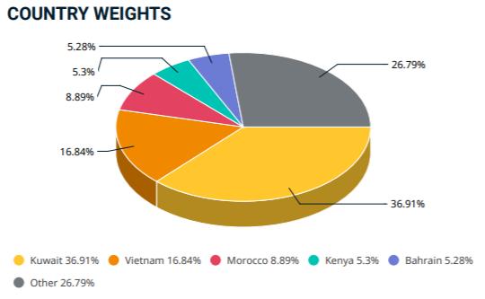 VCS và HNG lọt vào danh mục MSCI Frontier Markets Smallcap Indexes trong kỳ cơ cấu quý 2 - Ảnh 1.