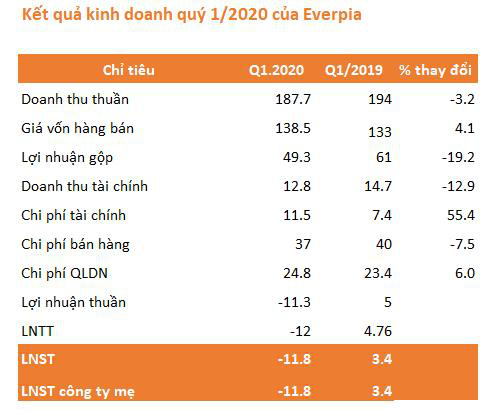 Quý 1, Everpia (EVE) lần đầu báo lỗ gần 12 tỷ đồng kể từ khi thành lập - Ảnh 1.