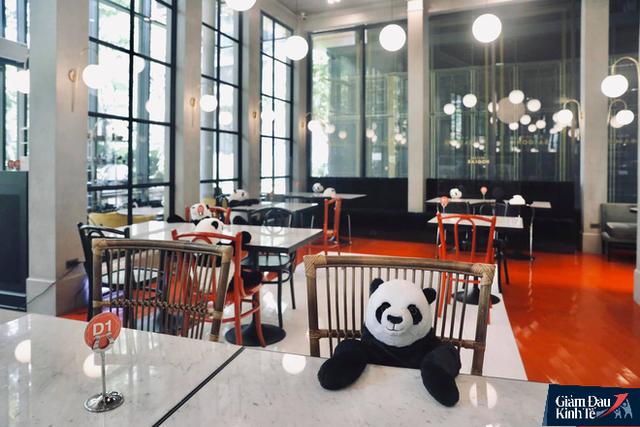 Ông chủ nhà hàng Việt trên đất Thái kể chuyện dùng gấu trúc tiếp khách lên báo quốc tế - Ảnh 1.