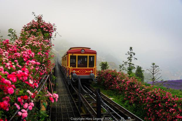 Việt Nam vừa có một thung lũng hoa hồng rộng 50.000 m2 được trao kỷ lục quốc gia, lại có thêm nơi để check-in hè này rồi! - Ảnh 4.