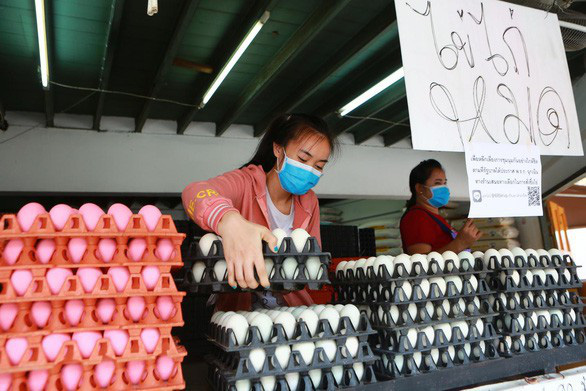 Thái Lan đẩy mạnh xuất khẩu trứng gà - Ảnh 1.