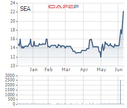 Một cá nhân vừa chi xấp xỉ 370 tỷ đồng mua 25 triệu cổ phần Seaprodex - Ảnh 2.