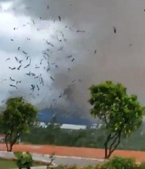 [ẢNH] Hiện trường vụ sập nhà xưởng ở Vĩnh Phúc làm 3 người chết, 18 người bị thương - Ảnh 8.