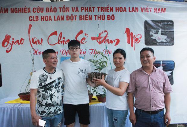 Đại gia Hà Nội chi mạnh 5 tỷ đồng mua giò lan đột biến nhìn như... ngọn rau muống - Ảnh 1.