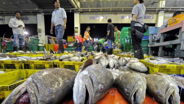 Vụ lừa đảo rúng động Thái Lan: Lừa khách mua phiếu giảm giá ăn hải sản rồi bùng, chủ nhà hàng lĩnh 1.446 năm tù, nộp phạt 1,3 tỷ đồng - Ảnh 1.
