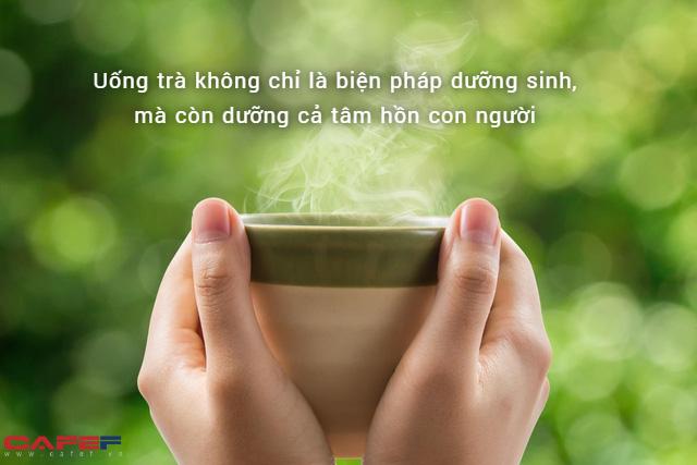 9 ích lợi khi uống trà mỗi ngày: Dưỡng sinh, dưỡng tâm, dưỡng hồn, phòng ngừa 3 loại ung thư phổ biến nhất - Ảnh 2.