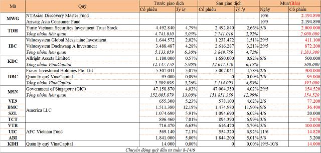 Chuyển động quỹ đầu tư tuần 8-14/6: Arisaig mua tiếp MWG, Yurie Vietnam bán TDH - Ảnh 1.