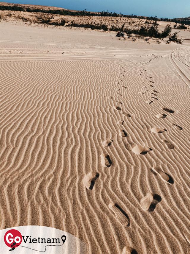 Ngắm hoàng hôn mê hoặc trên đồi cát, chiêm ngưỡng cung đường biển đẹp tuyệt đỉnh: Mũi Né, có tất thảy!  - Ảnh 13.