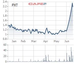 Cổ phiếu PXT giảm sàn sau 13 phiên tăng trần liên tiếp - Ảnh 1.