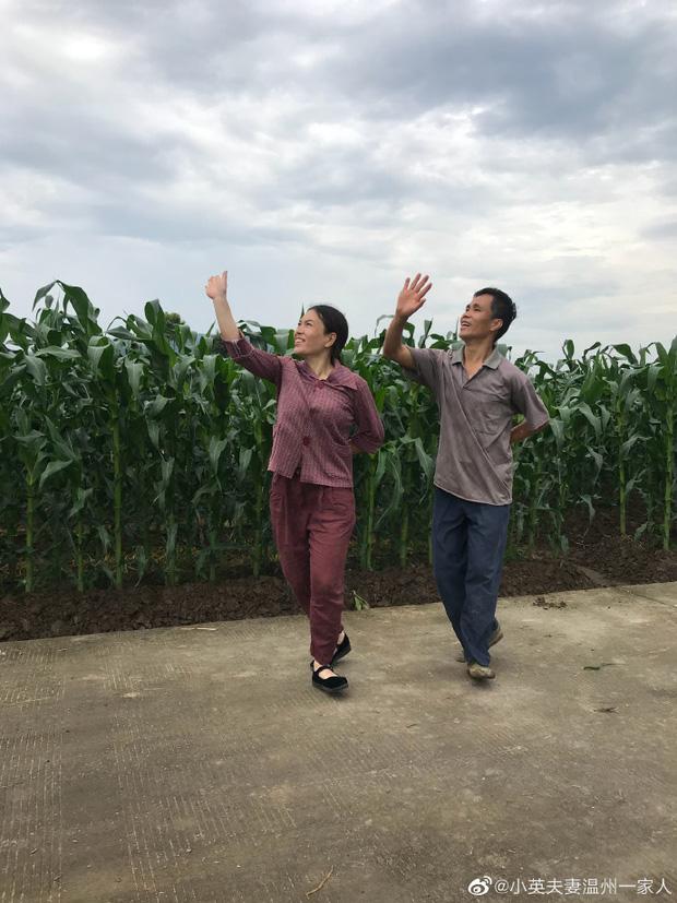 Sau tai nạn thảm khốc, cặp vợ chồng U50 đẩy lùi trầm cảm và lan tỏa sự tích cực qua điệu nhảy triệu view - Ảnh 3.
