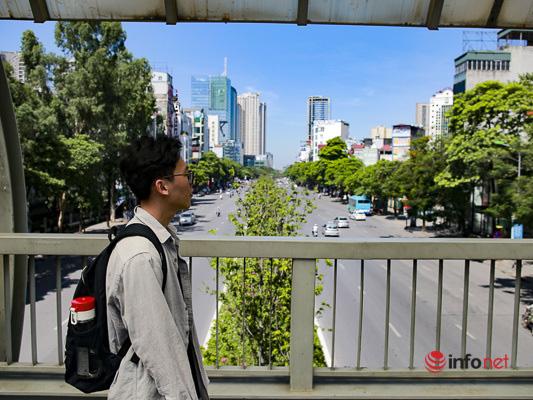 Hà Nội: Hàng phong trổ lá xanh tươi giữa hè nắng gắt - Ảnh 3.