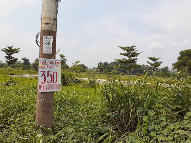 Hoa mắt với cung đường tờ dán, tờ rơi rao bán BĐS tại Long Thành (Đồng Nai) - Ảnh 8.