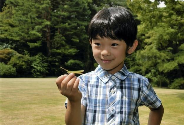 Suýt thay đổi luật vì không có người kế vị nhưng đến khi hoàng tử chào đời, Hoàng gia Nhật lại dạy dỗ con lạ lùng như thế này - Ảnh 1.