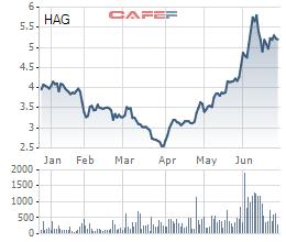 Bầu Đức: Nếu tôi không quyết liệt thì không có HAGL hôm nay, chắc chắn sẽ mua lại cổ phần để tăng sở hữu tại công ty nông nghiệp  - Ảnh 1.