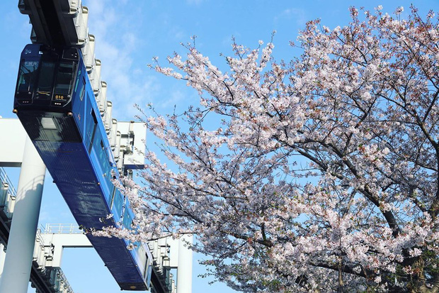 """Không hổ danh """"đất nước ngoài hành tinh"""" trong mắt du khách, Nhật Bản chính là nơi sở hữu đoàn tàu treo ngược dài nhất thế giới hiện nay - Ảnh 15."""