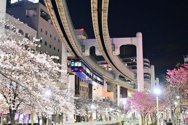 """Không hổ danh """"đất nước ngoài hành tinh"""" trong mắt du khách, Nhật Bản chính là nơi sở hữu đoàn tàu treo ngược dài nhất thế giới hiện nay - Ảnh 17."""