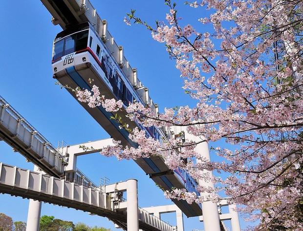 """Không hổ danh """"đất nước ngoài hành tinh"""" trong mắt du khách, Nhật Bản chính là nơi sở hữu đoàn tàu treo ngược dài nhất thế giới hiện nay - Ảnh 3."""