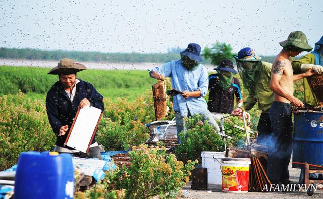 Tạm xa Hồ Tây một hôm, về Ninh Bình thăm bác nông dân thu nhập khủng nhờ nuôi ong lấy mật từ loài hoa ít ai ngờ tới  - Ảnh 9.