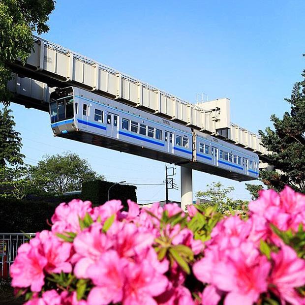 """Không hổ danh """"đất nước ngoài hành tinh"""" trong mắt du khách, Nhật Bản chính là nơi sở hữu đoàn tàu treo ngược dài nhất thế giới hiện nay - Ảnh 9."""