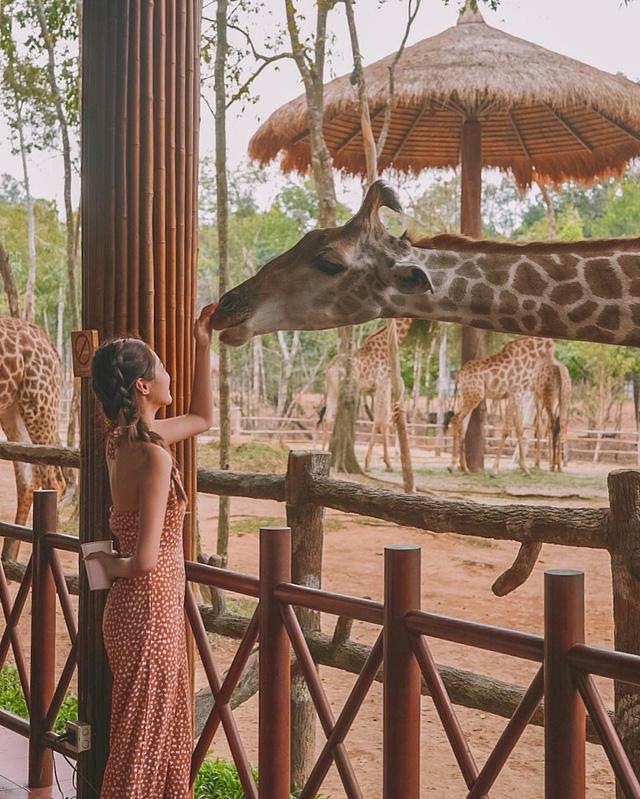 Du lịch Việt Nam hè này xịn chẳng kém gì ra nước ngoài: Vừa đẹp, vừa sang, lại giảm giá giật mình, ai không đi sẽ tiếc vô cùng - Ảnh 39.