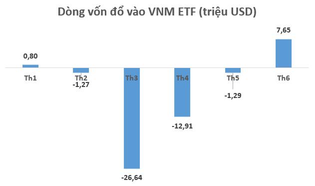 Chuyển động ETFs: VNM ETF và các quỹ ETF mới thành lập hút vốn mạnh trong tháng 6 - Ảnh 1.