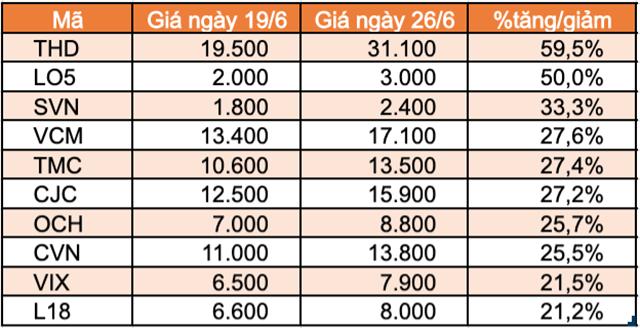 Top 10 cổ phiếu tăng/giảm mạnh nhất tuần: Thaiholdings liên tục tăng trần kể từ khi niêm yết - Ảnh 5.