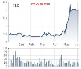 TLD tăng mạnh, Thăng Long Deco (TLD) lên kế hoạch chào bán 19 triệu cổ phiếu tăng vốn điều lệ - Ảnh 1.
