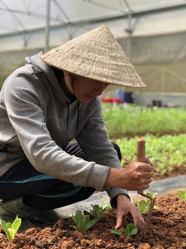 Cử nhân Luật bỏ thành phố lên Đà Lạt trồng rau, bị cha mẹ phản đối nhưng 1 năm sau nhận lại thành quả bất ngờ - Ảnh 1.