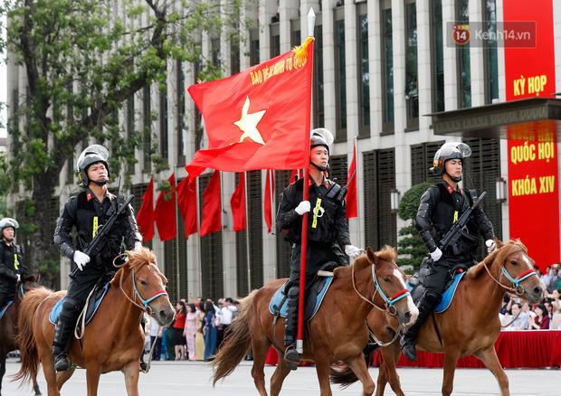 Profile siêu xịn của ngựa được đội Kỵ binh cảnh sát cơ động Việt Nam sử dụng: Là ngựa nòi Mông Cổ, thuộc một trong những giống đỉnh nhất thế giới - Ảnh 1.
