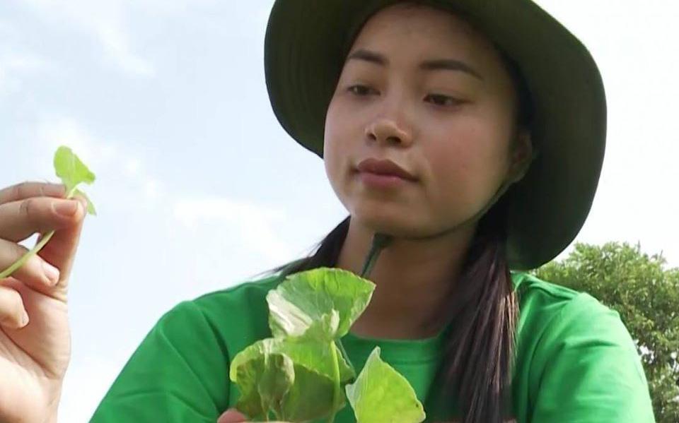 """Chuyện bột rau má, gáo dừa, phồng tôm Việt """"ngao du"""" thế giới"""