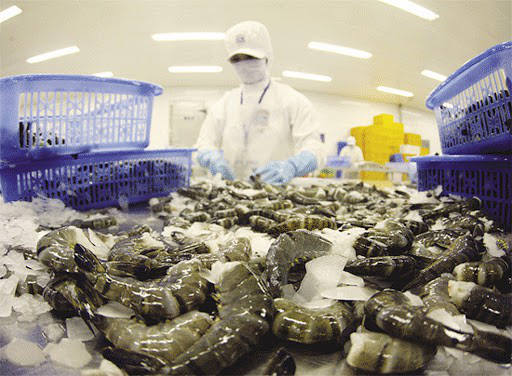 Trung Quốc ngừng bán tôm nhập khẩu của Ecuador do lo ngại SARS-CoV-2 - Ảnh 1.