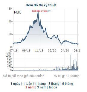 Tập đoàn MBG thông qua phương án phát hành riêng lẻ 25 triệu cổ phiếu với giá gần gấp đôi thị giá - Ảnh 1.