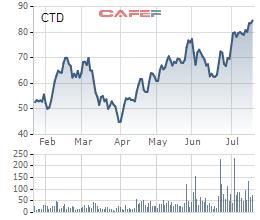 Coteccons (CTD): Doanh thu giảm sâu nhưng lãi ròng quý 2 vẫn tăng 22%, biên lãi gộp cải thiện quý thứ 5 liên tiếp - Ảnh 2.