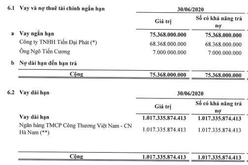 BOT Cầu Thái Hà (BOT): Quý 2 báo lỗ thêm 24 tỷ đồng - Ảnh 1.
