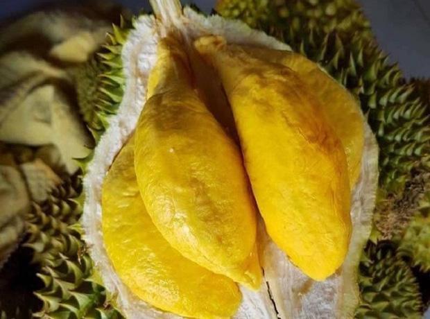 Tất tần tật thông tin về loại sầu riêng ngon nhất thế giới bán tại Việt Nam với giá 1,6 triệu/kg, dù đắt vẫn được giới sành ăn đổ mua - Ảnh 4.