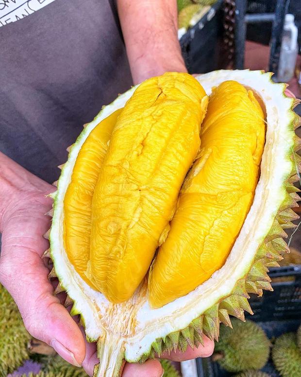 Tất tần tật thông tin về loại sầu riêng ngon nhất thế giới bán tại Việt Nam với giá 1,6 triệu/kg, dù đắt vẫn được giới sành ăn đổ mua - Ảnh 7.