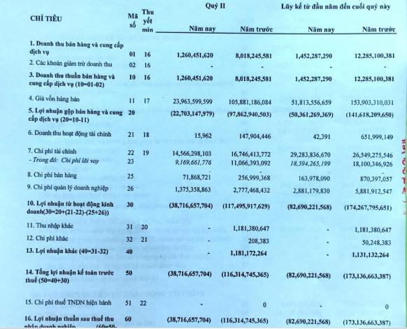 Thép Dana Ý (DNY) lỗ 39 tỷ đồng quý 2, đã âm vốn chủ sở hữu 165 tỷ đồng - Ảnh 1.