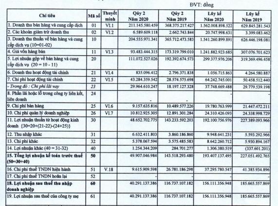 Becamex IJC (IJC) báo lãi 156 tỷ đồng nửa đầu năm, hoàn thành trên 62% kế hoạch - Ảnh 2.
